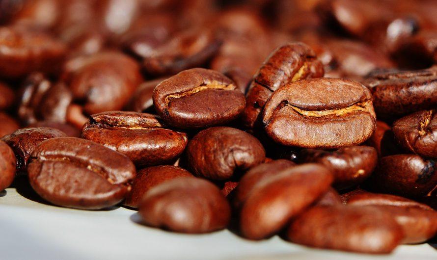 Wszystko, co powinieneś wiedzieć o kawie