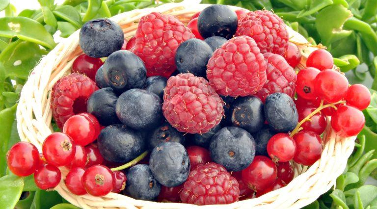 Raspberry-ketones-action