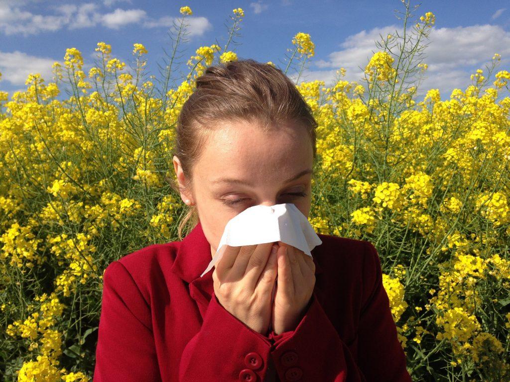 alergia na zioła - leczenie