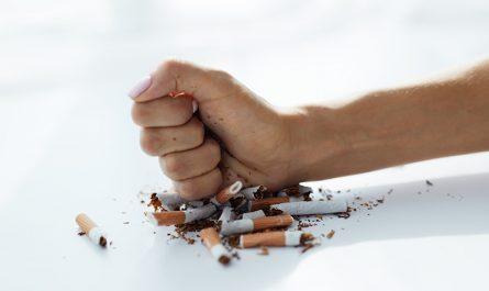 papierosy a potencja