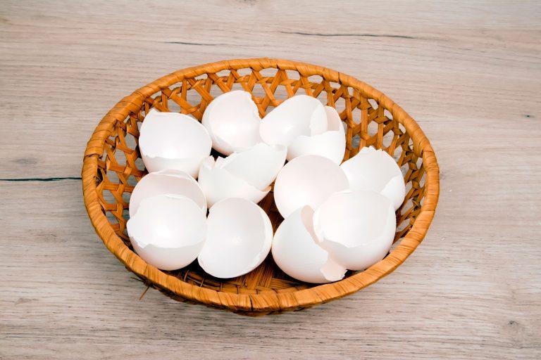 skorupki jaj - ich wpływ na zdrowie