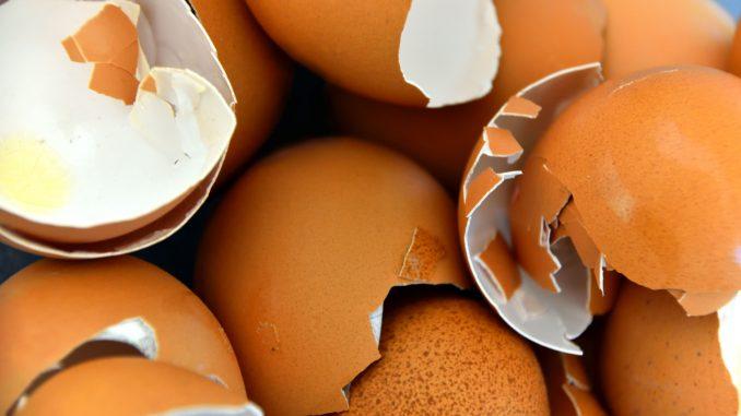 skorupki jaj - jak wpływają na zdrowie