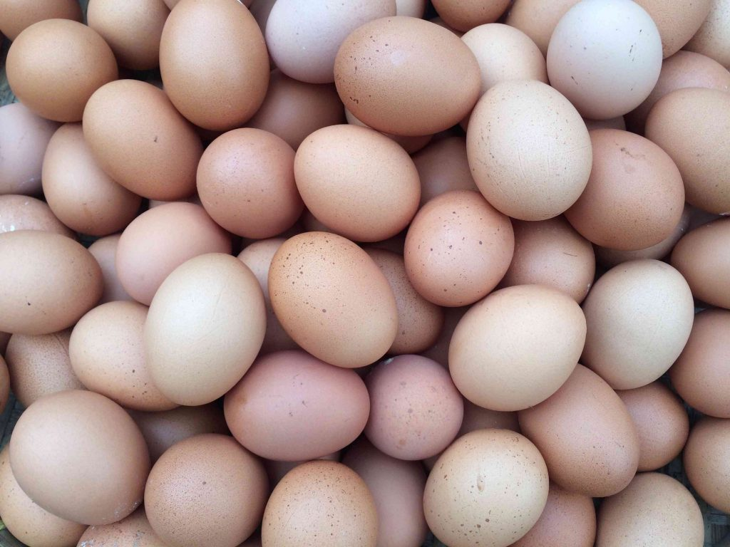 jajka jako kosmetyk