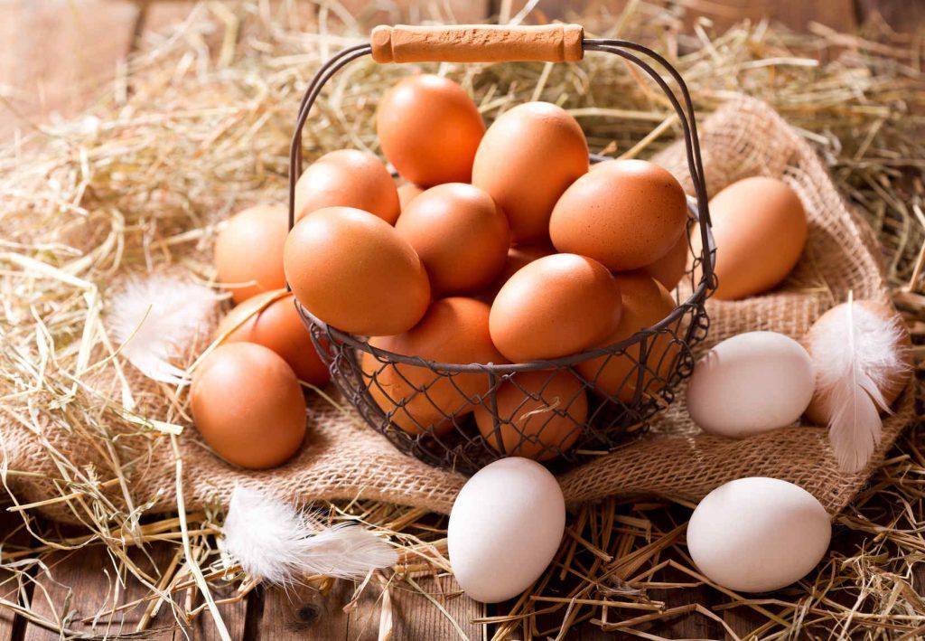 owowegetarianizm - jajka w diecie wegetariańskiej